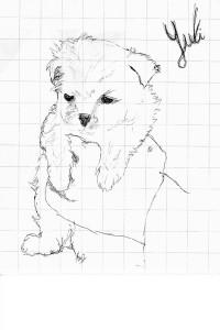 Yuki 20131117 Disegno