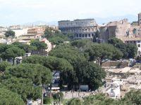 Roma Colosseo 04